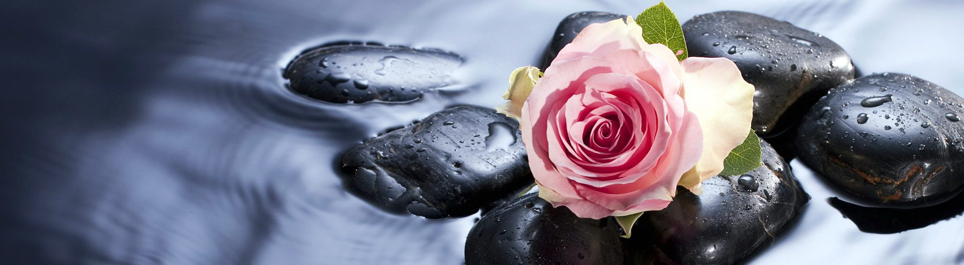 rose-bud-drop-water-stones-1920x1080